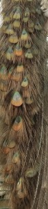 staart-Opal